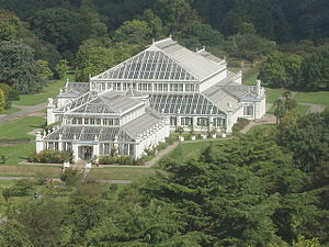 Kew_Gardens_Temperate_House_from_the_Pagoda